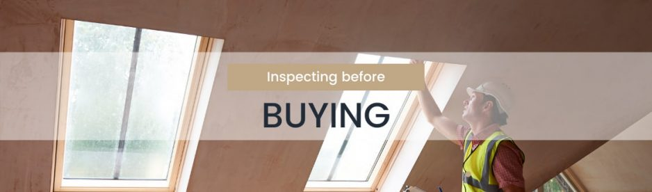 The Real Estate Buyer Property Inspection Report